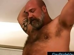 Older bear copulates cute gay